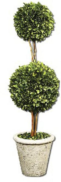 California Home Preserved Boxwoodtwo Sphere Topiary