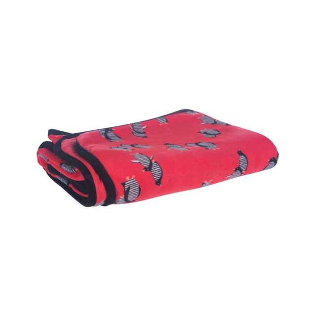 Beam and Co Blanket Red Penguin