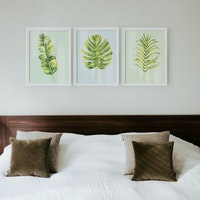 Codeco Poster Set Tropical Leaves with Pastel Background