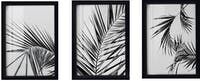 Codeco Poster Set Acrylic Palm in Black