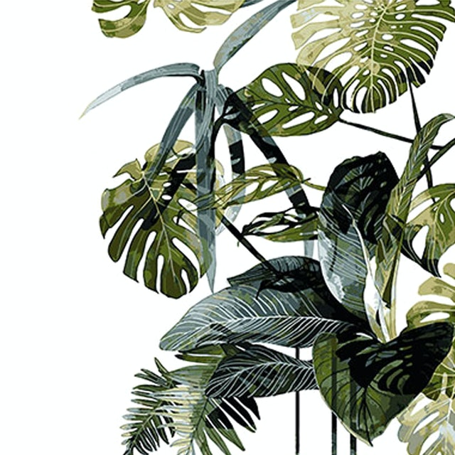 Codeco Wall Sticker Monstera and Plants