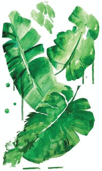 codeco Wall sticker Water Color Banana Leaf