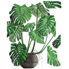 Codeco Wall Sticker Pottery Monstera Blossom