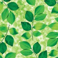 Interior DIY Stiker Kaca Film Green Leaf - HPG 31843 Glass Sheet
