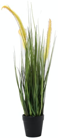 Festiva Furniture Artificial Plant Reeds With Vase 0339 9
