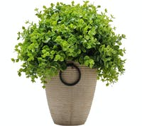 Festiva Furniture Artificial Plant Green Leaf With Vase 0339 11 Yw5