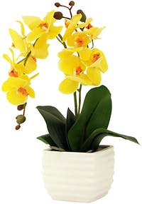 Festiva Furniture Bouquet Flower Orchid In White Pot Yellow 0089-11
