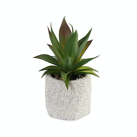 Festiva Furniture Artificial Plant Cactus Square Vase 7766-7a