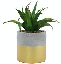 Festiva Furniture Artificial Plant Cactus Gold Vase - B 7766-10b