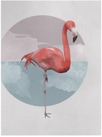 Gulaliku Flamingo On Canvas