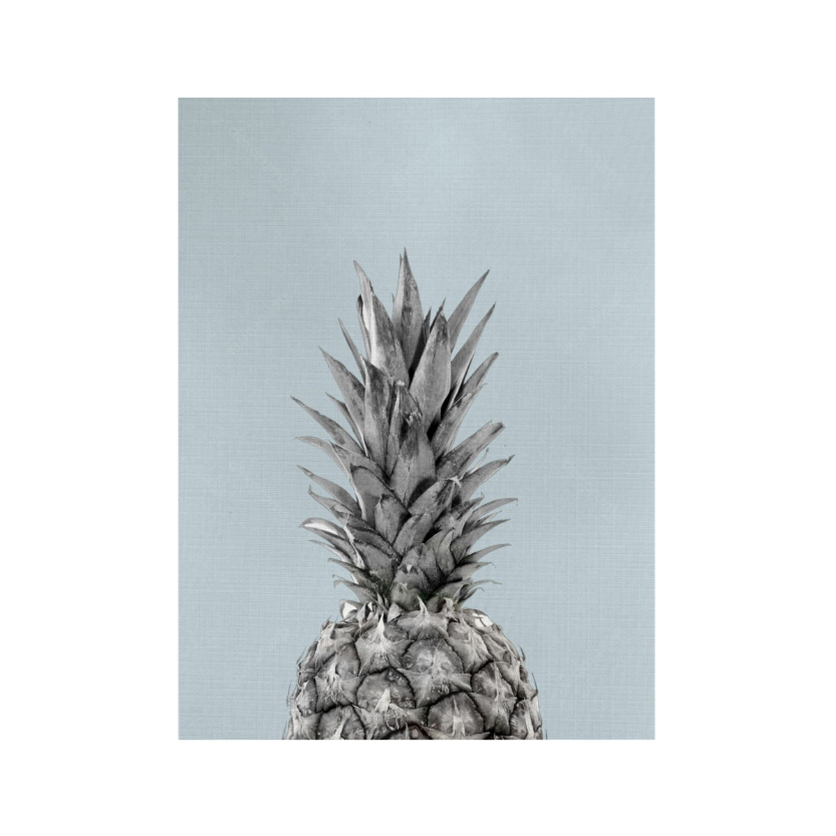 Gulaliku Pineapple on Canvas
