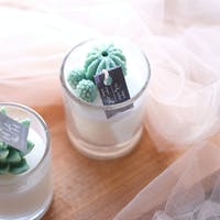 Haruhana Succulent themes eucalyptus scented glass candle 100 ml