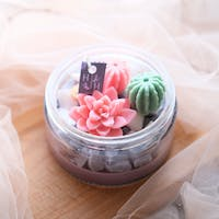 Haruhana Pink Succulent themes with vanilla cinnamon jar candles 200 gr
