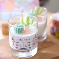Haruhana Succulent Eucalyptus Glass Candles