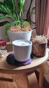 Haruhana Freesia Scented Candles