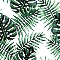 iwallyou Duo monstera wall sticker