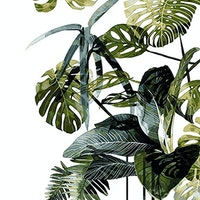iwallyou Wall Sticker Nature Monstera Plants