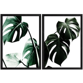 iwallyou Wall Poster Set Black Palm