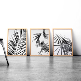 Codeco Wall Poster set Palm Leaves