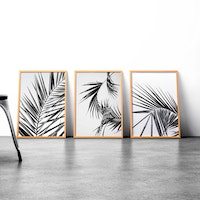 iwallyou Wall Poster set Palm Leaves