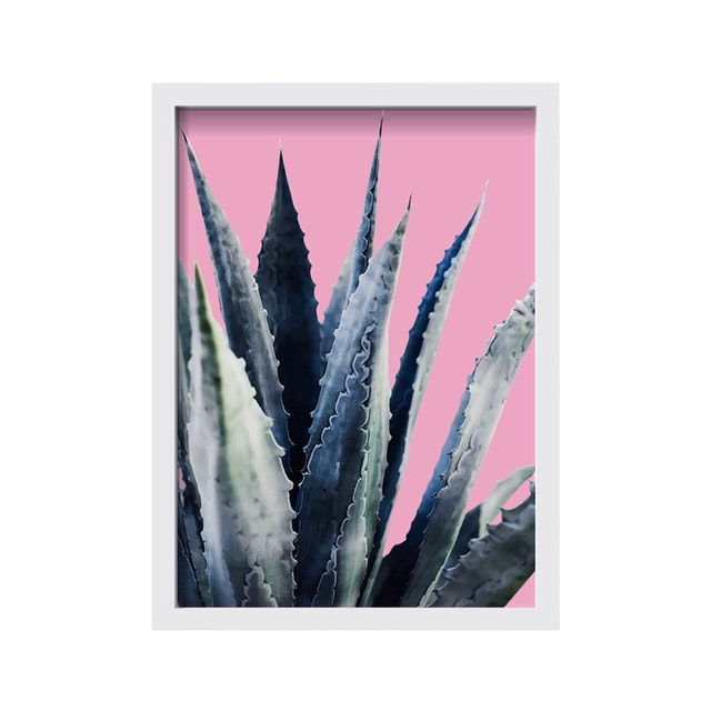 iwallyou Wall Poster Cacti On Pink