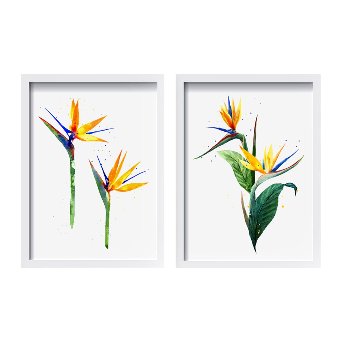 iwallyou Wall Poster Set Heliconia