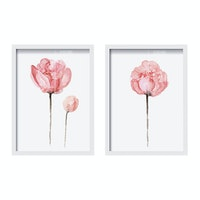 Codeco Poster Set Pink Peony Aksen Water Color