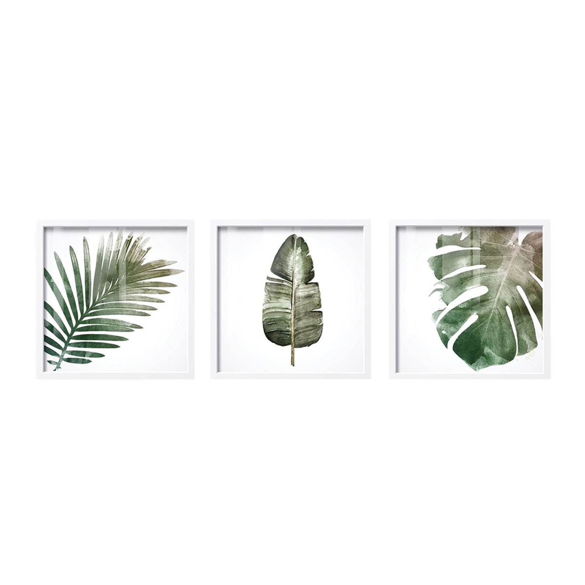iwallyou Poster Set Kotak Tropical Leaves
