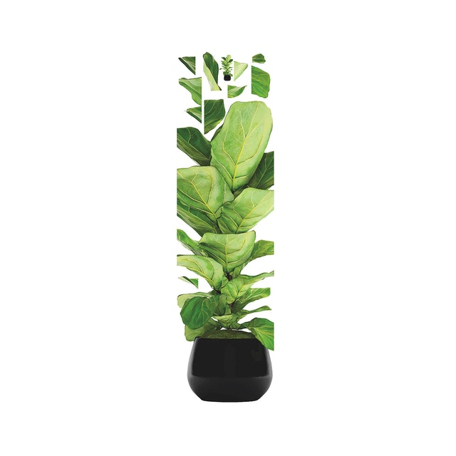 iwallyou Wall Sticker Ficus Lyrata On Black Pot