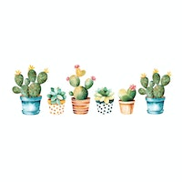 iwallyou Wall Sticker Cute Cacti & Sukulen