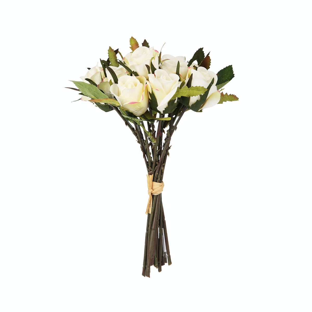Kokoji Florist Rose - 20 White