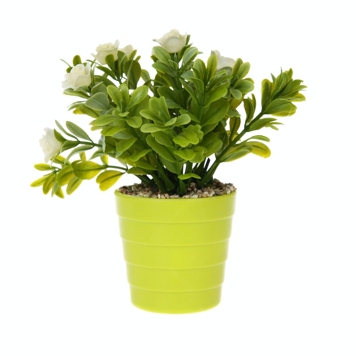 Kokoji Florist Flower Arrangements KKJ-127 White