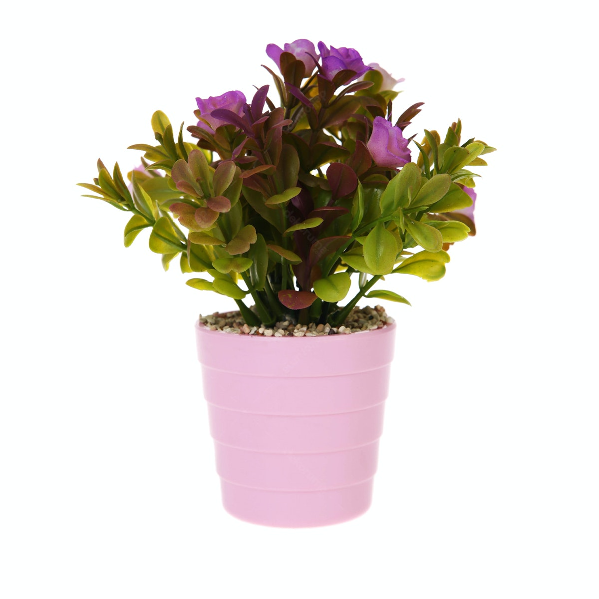 Kokoji Florist Flower Arrangements KKJ-127 Purple