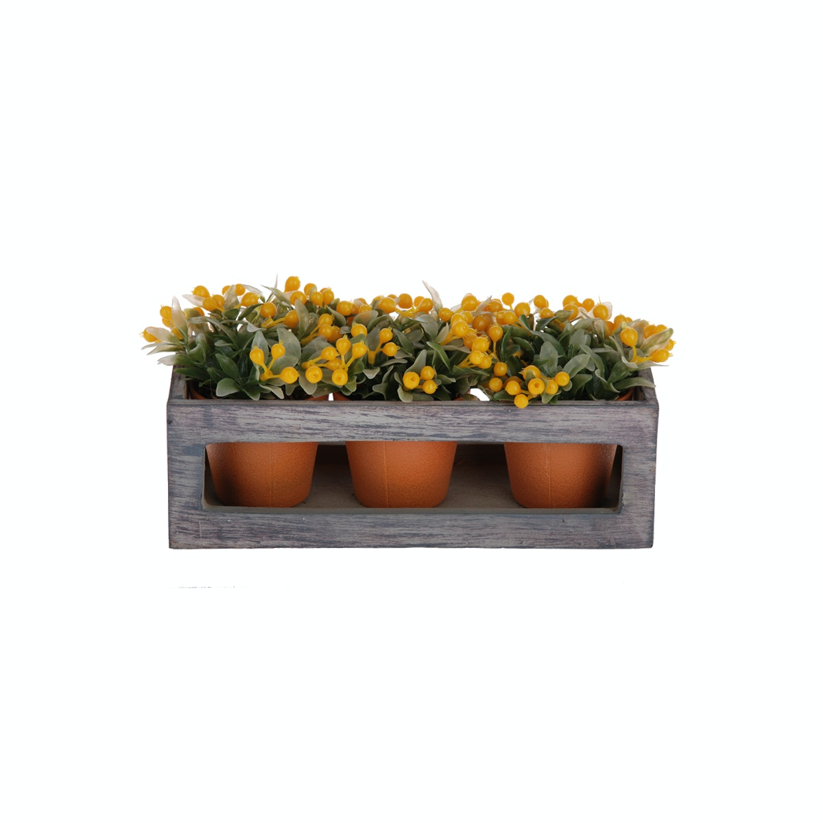 Kokoji Florist Wild Fruit Bonsai Yellow