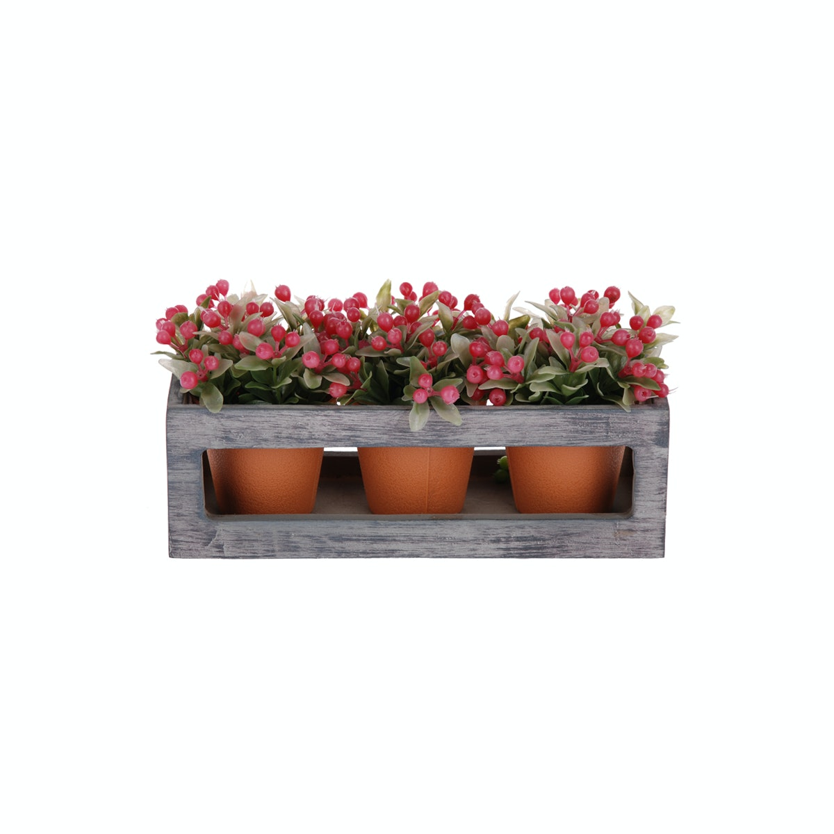 Kokoji Florist Wild Fruit Bonsai Red