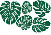 Painterous Wall Decal Monstera Bouquet 1802 100X67