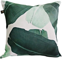 Megallery Cover Cushion C50