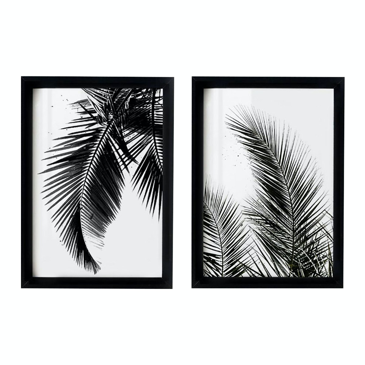 iwallyou Poster Set A3 Black Palm