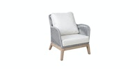 Pineapple Lifestyle Furniture Leon Lounge Arm Chair (Platinum)