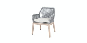 Pineapple Lifestyle Furniture Leon Dining Arm Chair (Platinum)