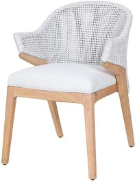 Pineapple Lifestyle Furniture Fremont Dining Arm Chair