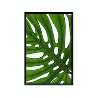 Poster House Poster Monstera - 20x30