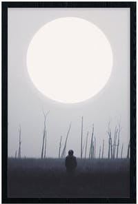 Poster House Poster Moonrise - 20x30