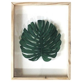 Seruni Living Acrylic Wall Gambar 1 Daun Monstera