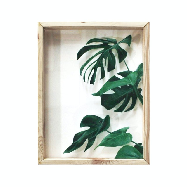 Seruni Living Acrylic Wall 7 Daun Monstera