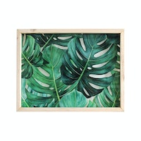 Seruni Living Acrylic Wall Daun Monstera Rimbun