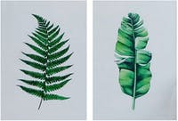 Stiletto Living Wall decor 2in1 / Poster - Tropical Vibes