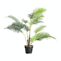 Kana Furniture Artificial Plant 2393 Kwai A3