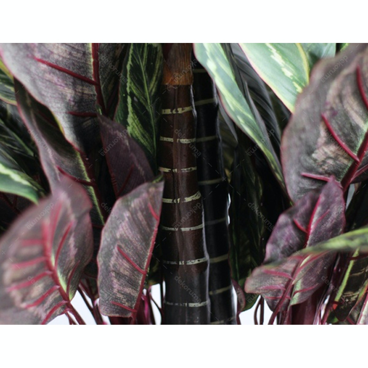KANA FURNITURE Artificial Plant 2402 Peacock Leaf A3 2402