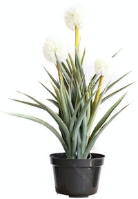 Kana Furniture Artificial Plant 2388 Big Ball Orchid A3